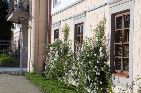 Rada Muzeum Regionalnego w Stalowej Woli