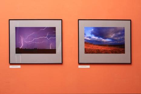 Misteria Natury – wystawa fotografii
